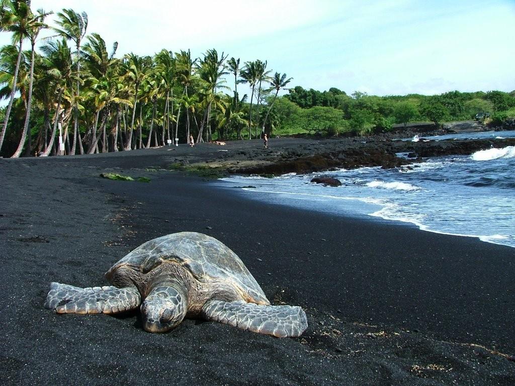 Image: hawaiitopten